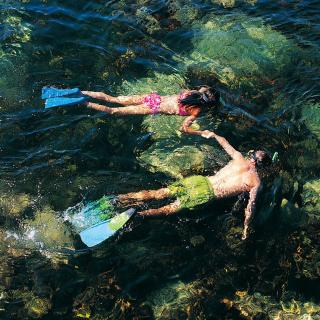 Couple Swimming In Caribbean - Obrázkek zdarma pro 128x128