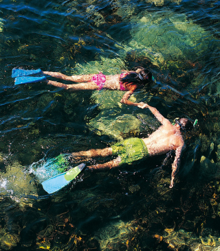 Couple Swimming In Caribbean - Obrázkek zdarma pro Nokia Asha 203