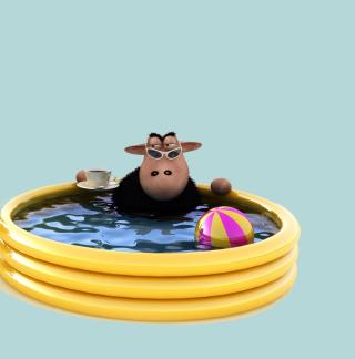 Sheep In Pool - Obrázkek zdarma pro 2048x2048