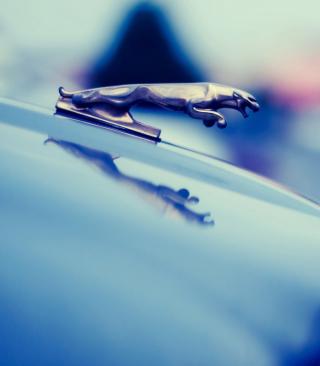Jaguar Picture for 480x854