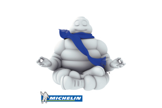 Michelin Picture for Android, iPhone and iPad
