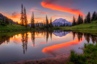 Emerald Lake, Carcross, Yukon - Obrázkek zdarma pro HTC Desire 310