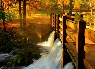Wonderful Autumn Waterfall Picture for Android, iPhone and iPad