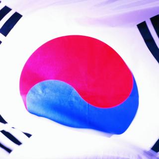 South Korea Flag - Obrázkek zdarma pro iPad