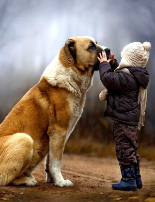 I Love Dogs - Obrázkek zdarma pro Nokia 5800 XpressMusic