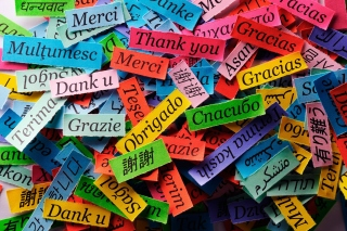 Pieces of Paper with Phrase Thank You - Obrázkek zdarma pro LG P500 Optimus One
