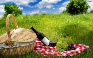 Picnic Background for Android, iPhone and iPad