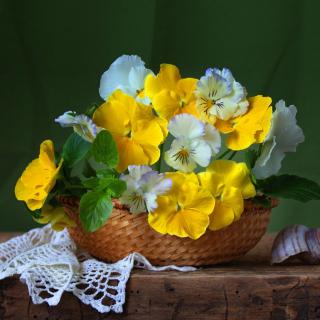 Violets In The Garden - Obrázkek zdarma pro 1024x1024