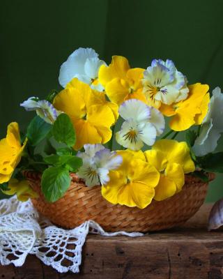 Violets In The Garden - Obrázkek zdarma pro Nokia Asha 203