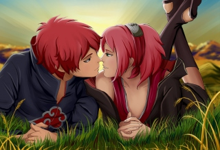 Sasori And Sakura Picture for Android, iPhone and iPad