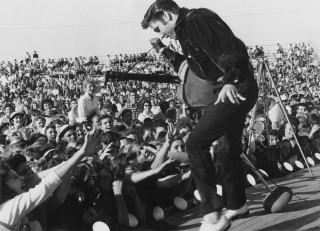 Free Elvis Presley At Concert Picture for Android, iPhone and iPad