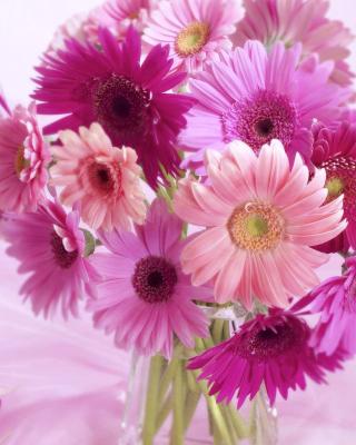 Gerbera Bouquet Idea - Obrázkek zdarma pro 360x480