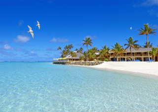 Bungalows At Beach Background for Android, iPhone and iPad