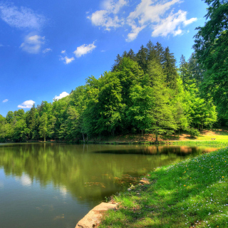 Green Valley HD - Obrázkek zdarma pro 1024x1024