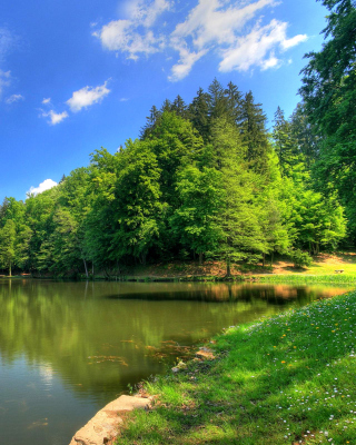 Green Valley HD - Obrázkek zdarma pro Nokia Asha 503
