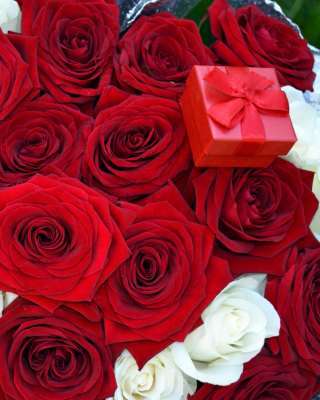 Roses for Propose Wallpaper for LG 230 Simple Flip