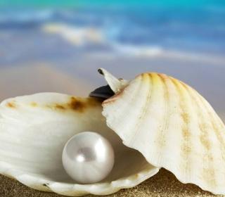 Pearl And Seashell - Obrázkek zdarma pro 2048x2048
