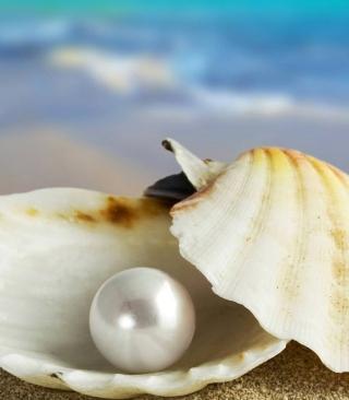 Pearl And Seashell - Obrázkek zdarma pro Nokia Lumia 1020