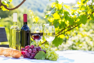 White and Red Greece Wine - Obrázkek zdarma pro Widescreen Desktop PC 1920x1080 Full HD