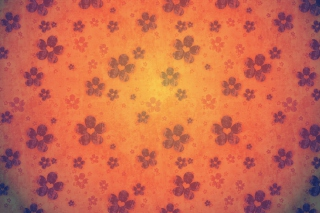 Flower Pattern - Obrázkek zdarma pro 320x240