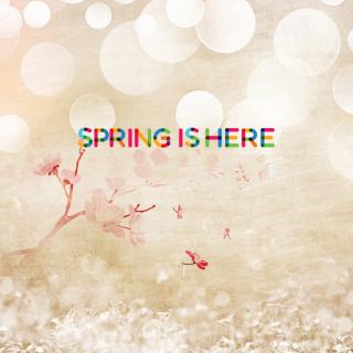 Spring Is Here - Obrázkek zdarma pro iPad 3