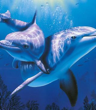 Blue Dolphins - Obrázkek zdarma pro 640x960