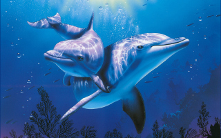 Blue Dolphins - Obrázkek zdarma pro 1366x768