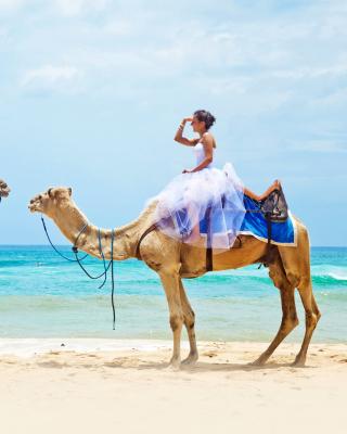 Two Camels - Obrázkek zdarma pro Nokia C3-01 Gold Edition