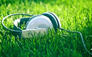 Headphones In Grass Picture for Android, iPhone and iPad