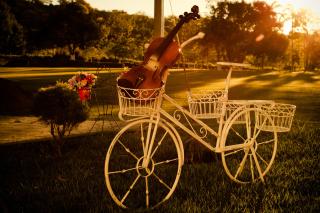 Violin - Obrázkek zdarma pro 1024x600