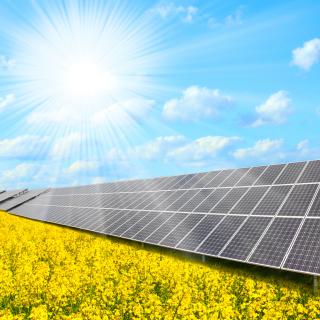 Solar panels on Field - Obrázkek zdarma pro iPad