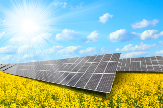 Solar panels on Field Background for Android, iPhone and iPad