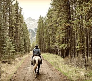 Horse Rider - Obrázkek zdarma pro 320x320