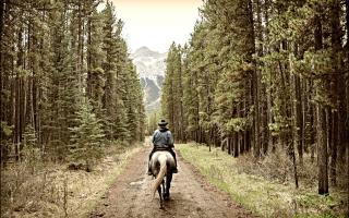 Horse Rider - Obrázkek zdarma pro Samsung Galaxy S5