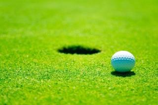 Golf Ball - Obrázkek zdarma pro Motorola DROID 3