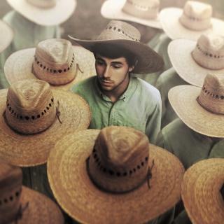 Mexican Hats - Obrázkek zdarma pro 208x208