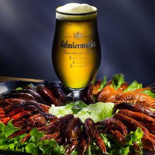 Beer and Crawfish - Obrázkek zdarma pro 208x208