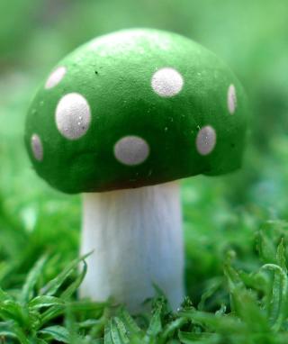 Green Mushroom - Obrázkek zdarma pro 240x320