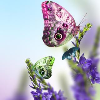 Tender Butterfly HD - Obrázkek zdarma pro iPad mini