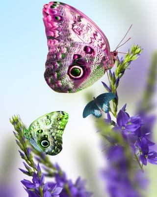 Tender Butterfly HD - Obrázkek zdarma pro 480x854