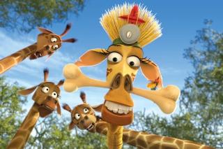 Madagascar Escape 2 Africa - Obrázkek zdarma pro Samsung Galaxy Ace 4