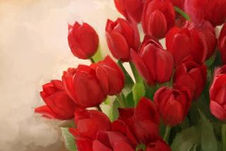 Art Red Tulips - Obrázkek zdarma pro Fullscreen Desktop 1600x1200
