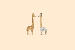 Free Giraffe-Zebra Picture for Android, iPhone and iPad