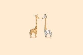 Giraffe-Zebra - Obrázkek zdarma pro 800x480