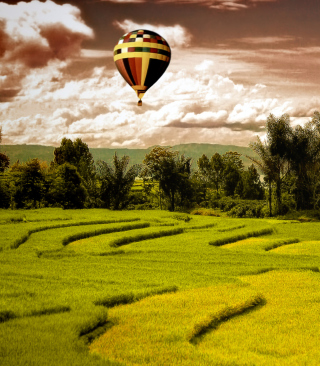 Green Field Landscape - Obrázkek zdarma pro 240x432