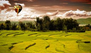 Green Field Landscape - Obrázkek zdarma pro 720x320