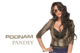 Poonam Pandey - Obrázkek zdarma pro 1400x1050