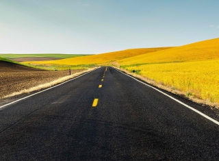Road And Autumn Field Wallpaper for Android, iPhone and iPad