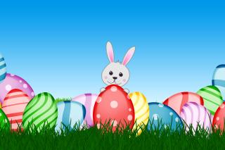 Easter bunny - Obrázkek zdarma pro 480x320