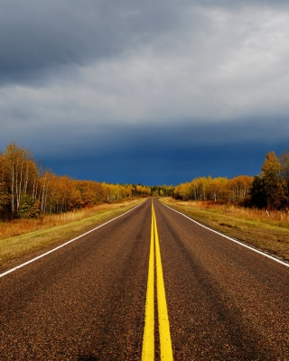 Autumn Road - Obrázkek zdarma pro 352x416